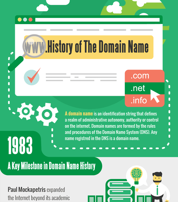 History of The Domain Name