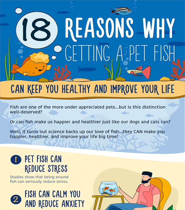 18 Reasons Why Getting a Pet Fish