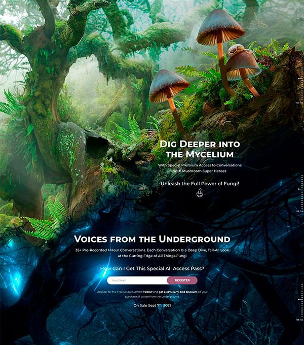 Fungi Website